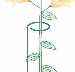 "Bosmere 24"" Single Plant Stem Support with 3"" Hoop, 3-Pack"