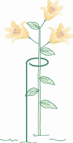 Bosmere 24″ Single Plant Stem Support with 3″ Hoop, 3-Pack