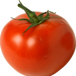 Fruit Or Tomato – Truth About What It Is