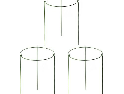 Garden Plant Support Ring Mini Treils for Potted Plant Pack ...