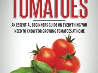 Growing Tomatoes: An Essential Beginners Guide on Everything...