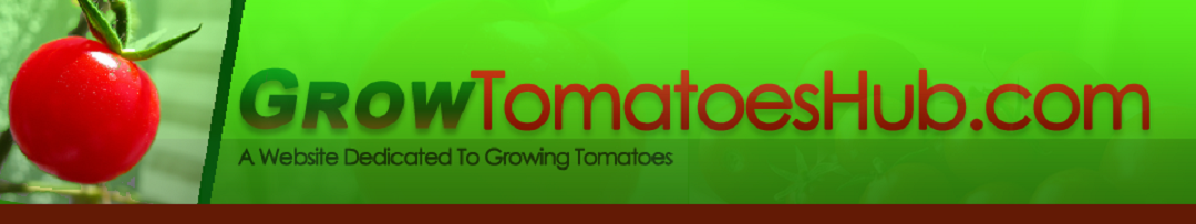 Growing Tomatoes Guide and Tips