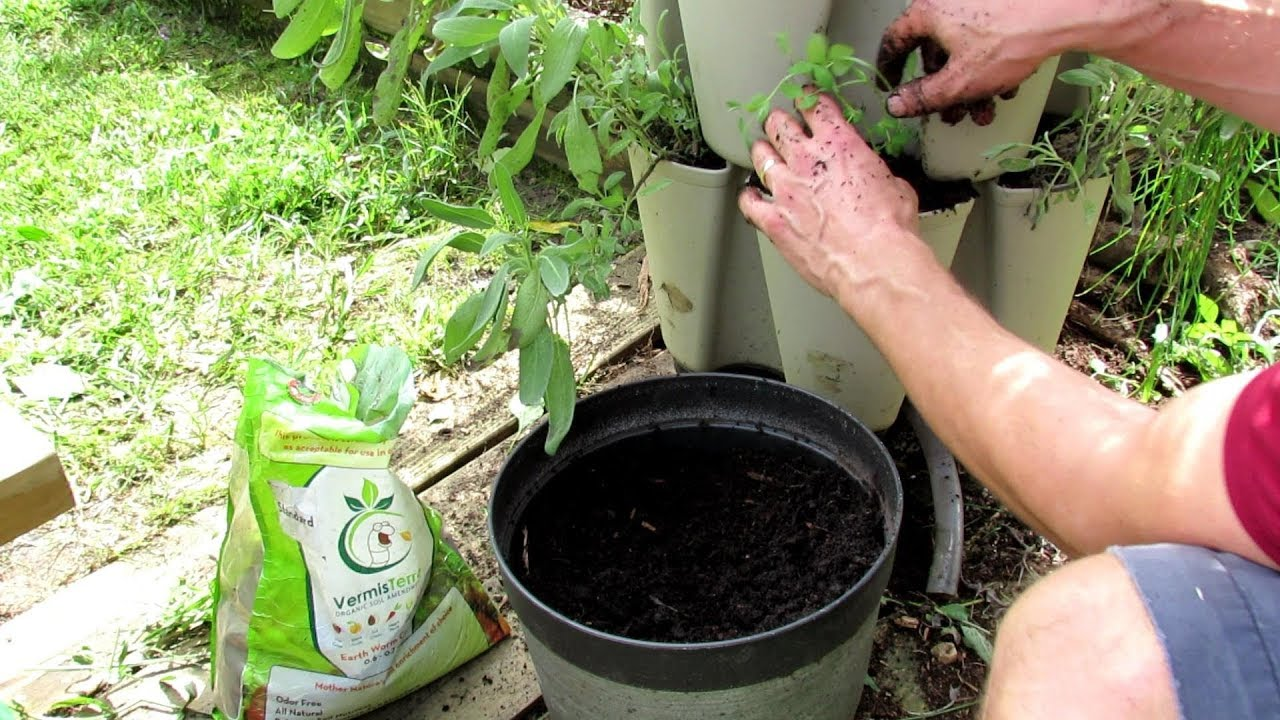 Vertical Container Vegetable Gardening: Planting Cool Weathe…