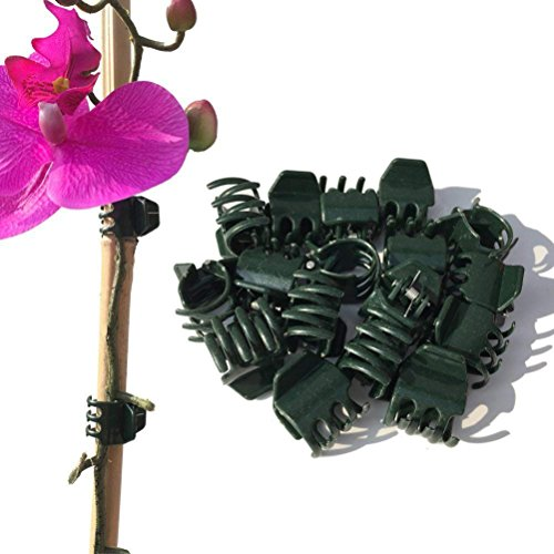 Vtete 50 PCS Large Size Orchid Clips and Garden Support Clip…