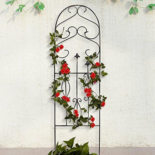 Amagabeli Garden Trellis for Climbing Plants 60″ x 18″ Rustp…