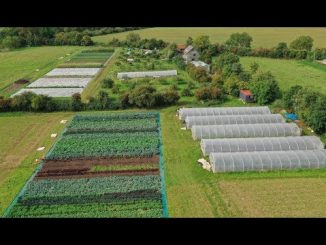 Going No-Dig: Profitable Market Gardening in the heart of En...