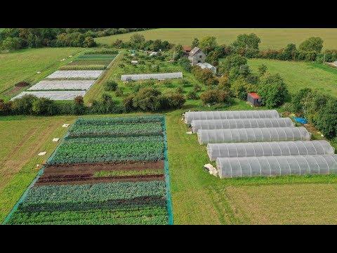 Going No-Dig: Profitable Market Gardening in the heart of En...