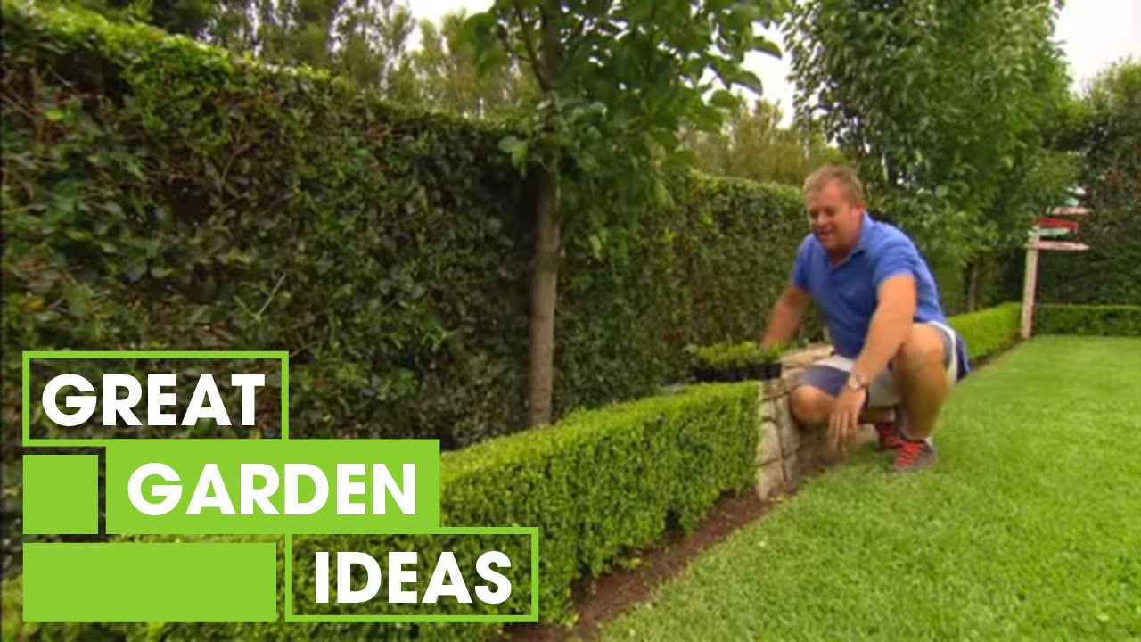 Tips & Tricks For Perfect Hedging | Gardening | Great Home I…