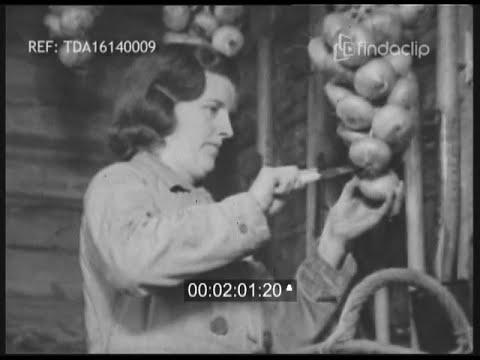 Winter Work In The Garden - Wartime Gardening 1943 WWII